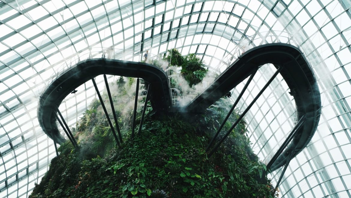 Interior Cloud Forest en Singapur